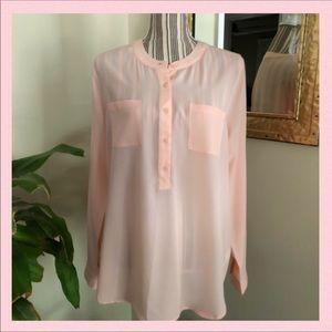 Classy & Feminine Semi-Sheer Dressy Blouse